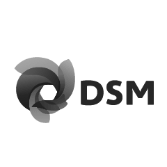 DSM_COATING_RESINS